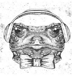 Hipster animal frog hand drawing muzzle of frog vector
