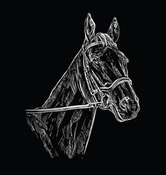 Horse portrait black 22 vector