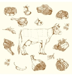 Meat Hand Drawn Elements Set vector