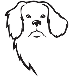 Niuf dog head vector