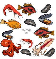 set colored sea food products vector image