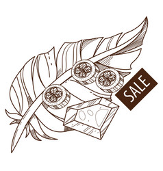sale feather ruby and coins outline drawing for vector image