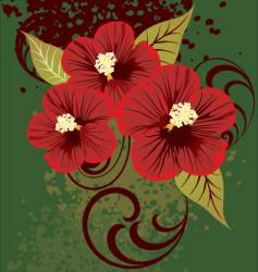 01 hibiscus vector image