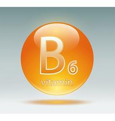 vitamin B6 vector image vector image