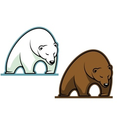 Big kodiak bear vector image