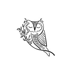 concept owl with branch and leaf design vector image