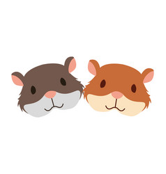 Hamsters rodent on white background vector