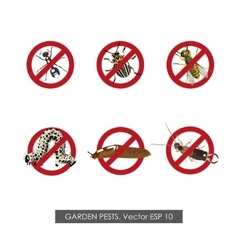 Pest control Set of prohibition signs vector image