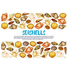 Seashell banner with marine mollusc shell border vector