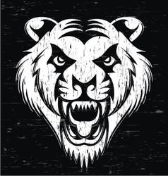 Grunge Tiger Head vector image vector image