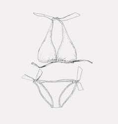 set of swimwear vector image