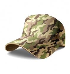 army cap vector image vector image