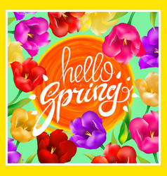 hello spring with bright colorful vector image