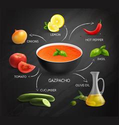 Gazpacho recipe infographics layout vector