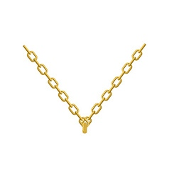 Gold chain on his neck jewelry Accessory precious vector