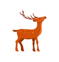 Graceful brown spotted deer with antlers wild vector