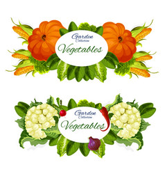 natural vegetables and grocery products vector image