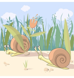 Snails vector image