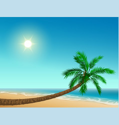 paradise tropical beach inclined palm tree clear vector image vector image