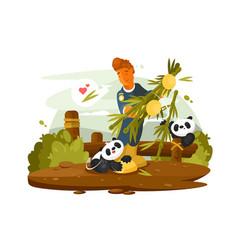 zoo worker feeds cute pandas vector image vector image
