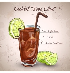 Cocktail cuba libre vector