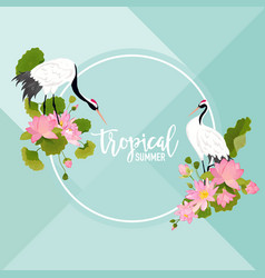 crane birds lotus flowers and leaves summer banner vector image