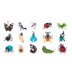 cute insects cartoon funny colorful bugs bees vector image