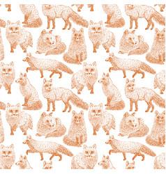 fox seamless pattern sketch hand drawn vector image