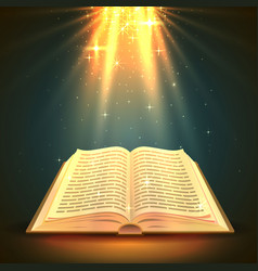 Open book with magical light religion object vector