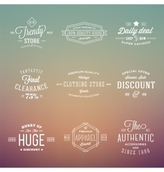 Retro Typography Labels Badges Set on Abstract vector image