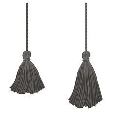 Set two black hanging decorative tassels vector