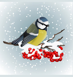 titmouse sitting on snowcovered branch of mountain vector image