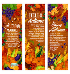 Autumn leaf fall harvest season banners vector