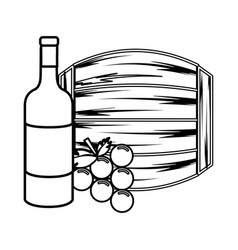 Line bottle wine barrel and grape vector