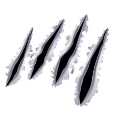 monster claw scratch hole vector image