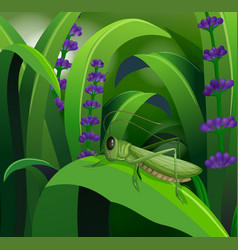 Nature scene with grasshopper on leaf vector