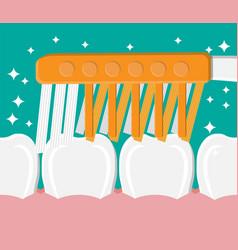 toothbrush cleans teeth brushing teeth vector image