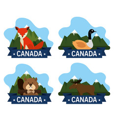 canadian culture group of animals vector image