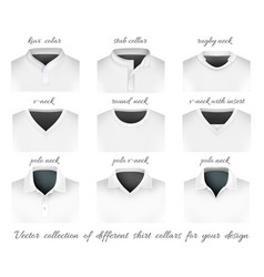 Different collars for your vector