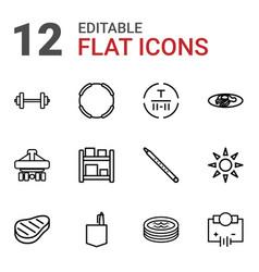 Isometric icons vector
