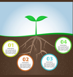 Plant And Root Infographic Background Design Templ vector