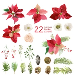 Poinsettia Flowers and Christmas Floral Elements vector