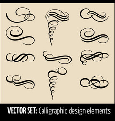 Set of calligraphic and page decoration vector