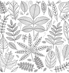 Set of outline leaves vector image