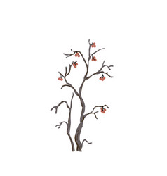 Silhouette of a rowan tree with berries vector