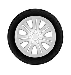 wheel in on white background vector image