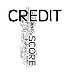your credit score dos and donts text word cloud vector image