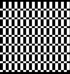chequered pattern with squares and rectangles vector image