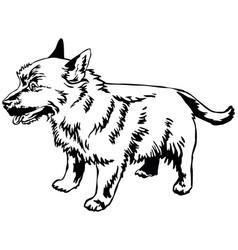 decorative standing portrait of dog norwich vector image