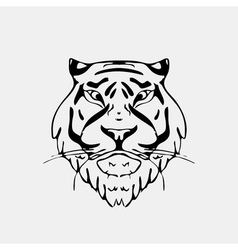 Hand-drawn pencil graphics tiger head Engraving vector image